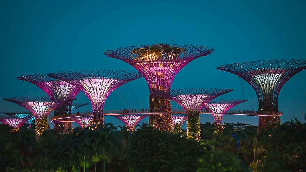 Die Supertrees im Gardens By The Bay in Singapur in der Nacht.